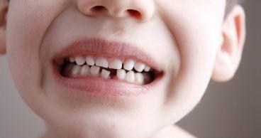 Полезная информация про зубы